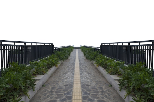 Pathway with green plants and fence isolated over white background