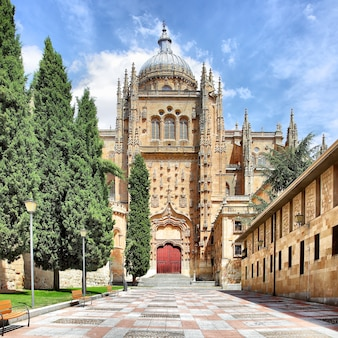 Патио чико и новый собор в саламанке, испания
