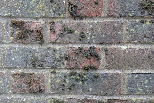 Pattern of brick and block background