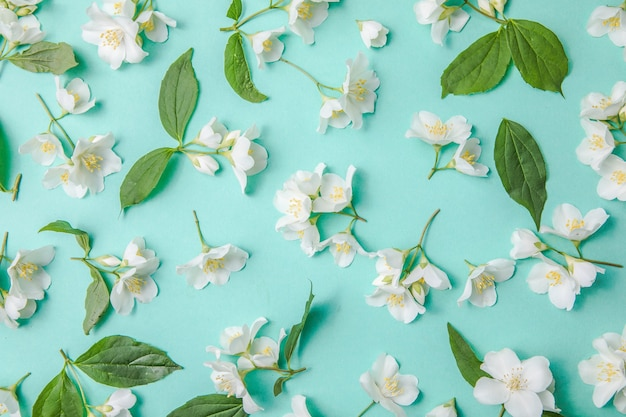 Pattern of bud jasmine and leaves scattered on a green background overhead view flat lay
