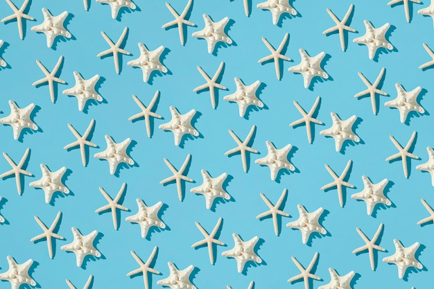 Pattern composition made with starfishes