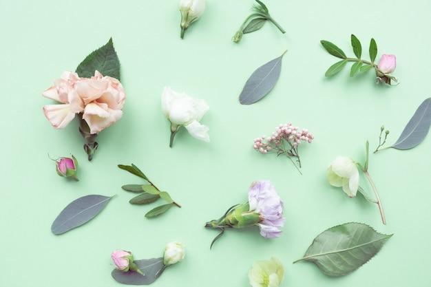 緑の背景にバラのつぼみ、繊細な白い花、枝、葉、花びらと花柄。フラットレイアウト、上面図