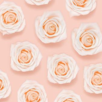 핑크 화이트 장미 꽃 파스텔 컬러의 패턴