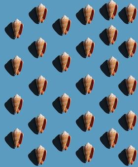 青い背景、トップ ビューにハード シャドウと貝殻からのパターン。