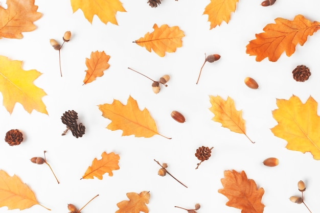 Pattern made of autumn leaves on white background.