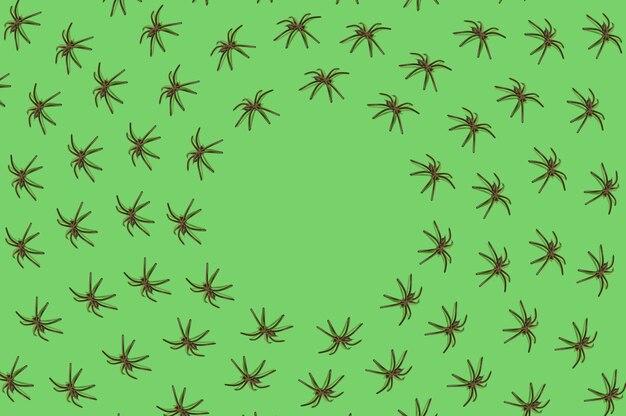 녹색 배경에 검은 거미의 패턴입니다. 할로윈 무서운 악몽 개념입니다. 복사 공간 원