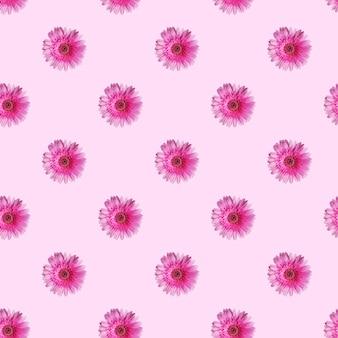 Узор из цветов герберы на светло-розовом фоне