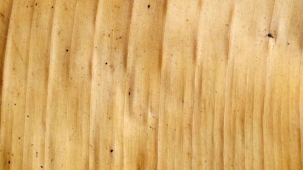 乾燥バナナの葉のパターン