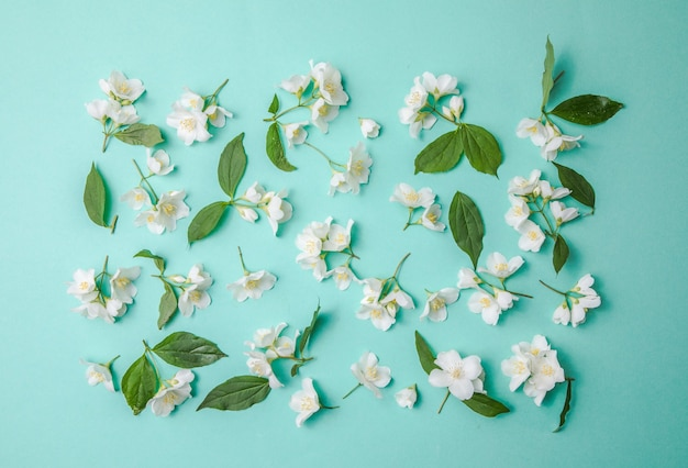 芽ジャスミンと緑の背景に散在する葉のパターン俯瞰図フラットレイ