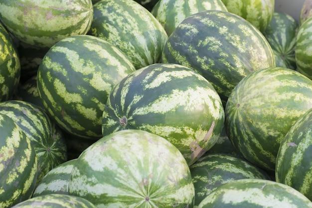 많은 녹색 수박의 패턴. 농업 배경