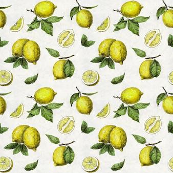 녹색 잎과 흰색 배경에 풍미와 전체 및 슬라이스 레몬의 패턴