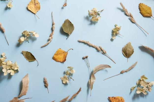 青の秋のテーマのパターン
