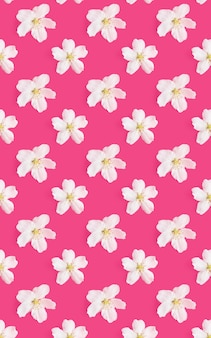 A pattern of white flowers of an apple tree on a bright pink background.