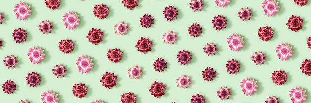 마른 꽃의 근접 꽃 봉 오리와 패턴