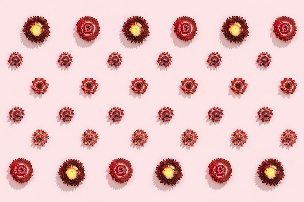 마른 붉은 꽃의 클로즈업 싹이 있는 패턴, 분홍색에 작은 꽃. 내츄럴 플라워 플랫 레이.