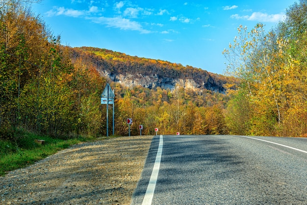 Paved road in the mountains covered with forest