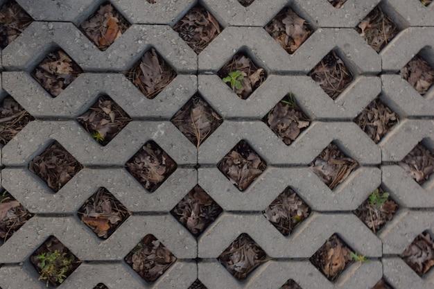 마름모 형태로 전체 배경에 돌 타일을 포장합니다. 그 사이로 마른 풀이 싹을 틔웠다.
