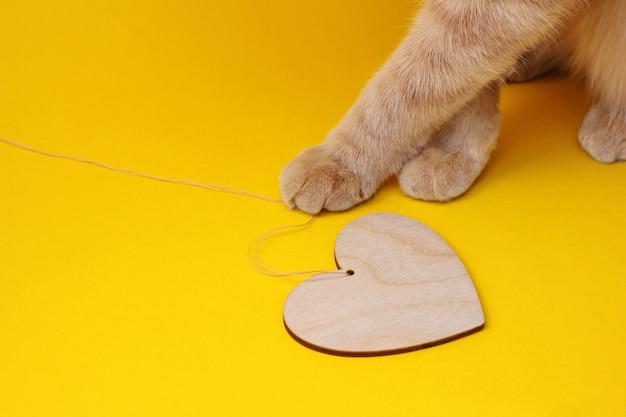 노란색 배경에 문자열에 나무 마음을 가지고 노는 빨간 고양이의 발. 애완 동물 개념에 대한 사랑.