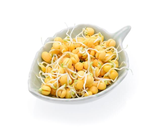 흰색 바탕에 완두콩 콩나물