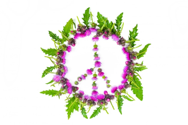 Peace sign (pacific)-a symbol of peace, disarmament and anti-war movement, lined with leaves and delicate pink flowers blossomed thistle.