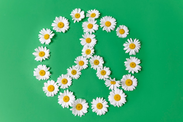 Peace symbol made of white daisies isolated on a green background.