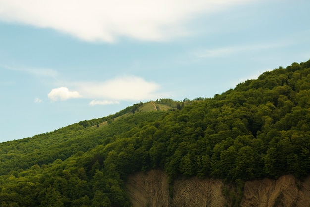 Мирный и красивый пейзаж при дневном свете