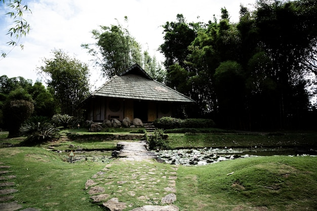 숲 속에서 평화로운 오두막