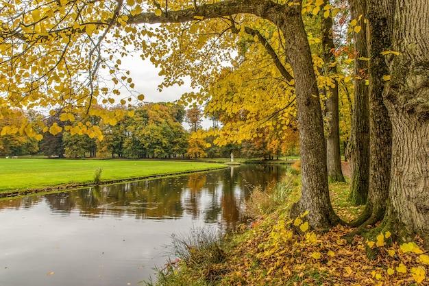 Спокойный вид на парк с озером и деревьями в пасмурный день