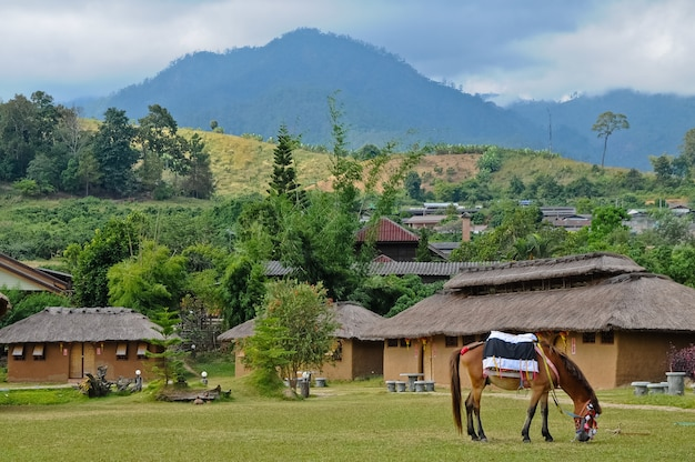 Peaceful village in pai thailand