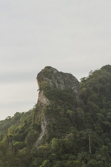Peak of inhanga needle in copacabana in rio de janeiro brazil.