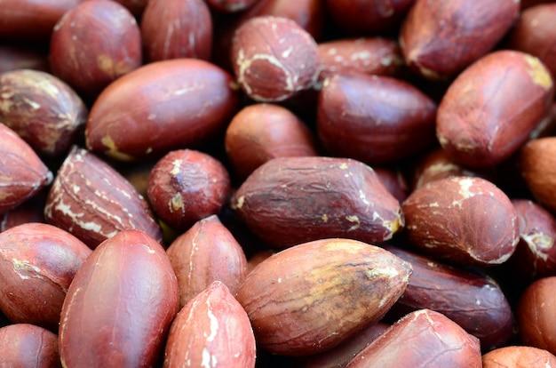 Арахис. много мелких желтых орехов с коричневой кожурой. фоновая текстура