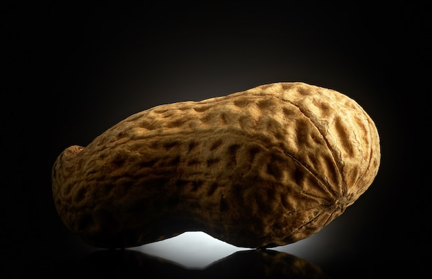 Peanut on black background with reflection. close-up or macro. health concept
