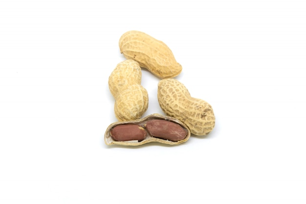 Peanut isolated on white screen