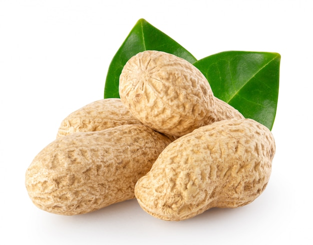 Peanut pods with green leaves