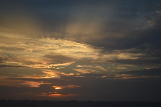 Груша с красивым закатом