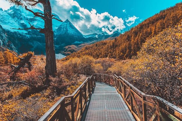 중국 쓰촨성 yading nature reserve의 가을 진주 호수 또는 zhuoma la 호수와 설산
