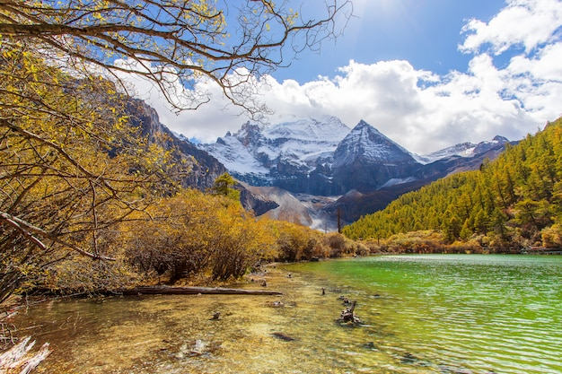 Pearl lake or zhuoma la lake and snow mountain in autumn in yading nature reserve, sichuan, china.
