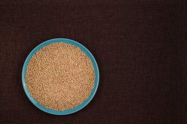 Pearls barley grain seed on background with copy space for recipe