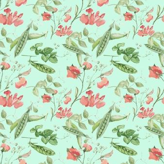 Плоды гороха листья веточки цветов. ручной обращается векторные иллюстрации акварель.