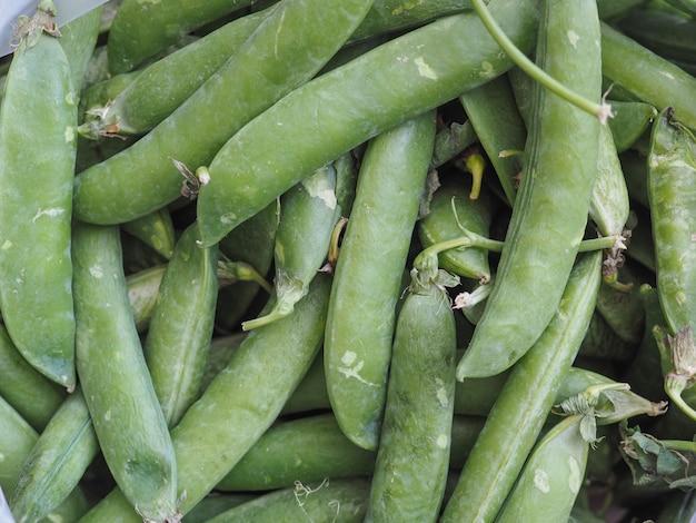 エンドウ豆豆類野菜