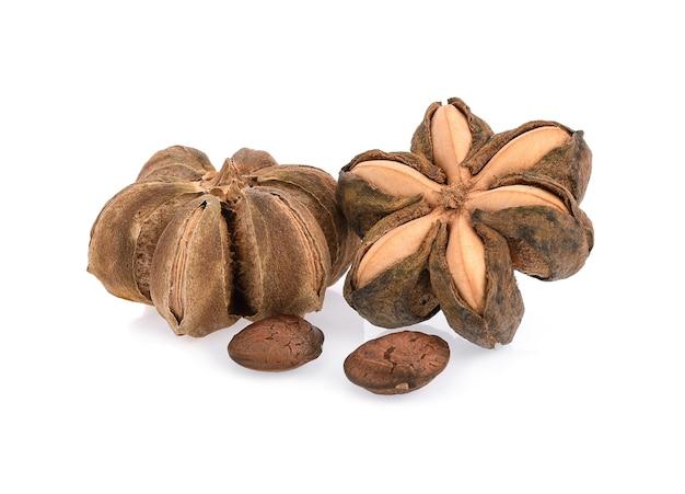 エンドウ豆の星インカは白い背景で隔離