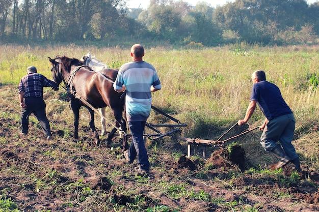 농부들은 말과 함께 밭을 갈아 탄다