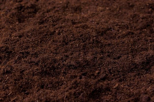 꽃의 묘목을 심기위한 이탄 토양 난소 근접 촬영 늪에서 자연 이탄 선택적 초점