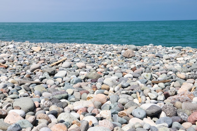 흑해의 자갈 해변