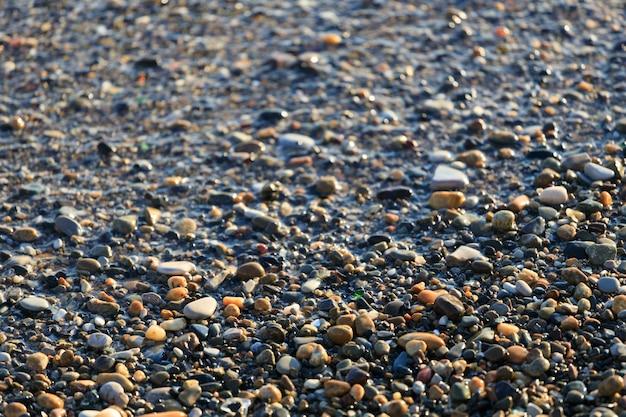 여름에 자갈 바다 해안입니다. 해변. 고품질 사진