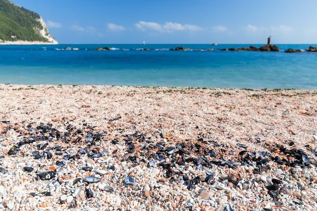 Галька и ракушки на пляже урбани побережья ривьеры дель конеро. сироло, италия.