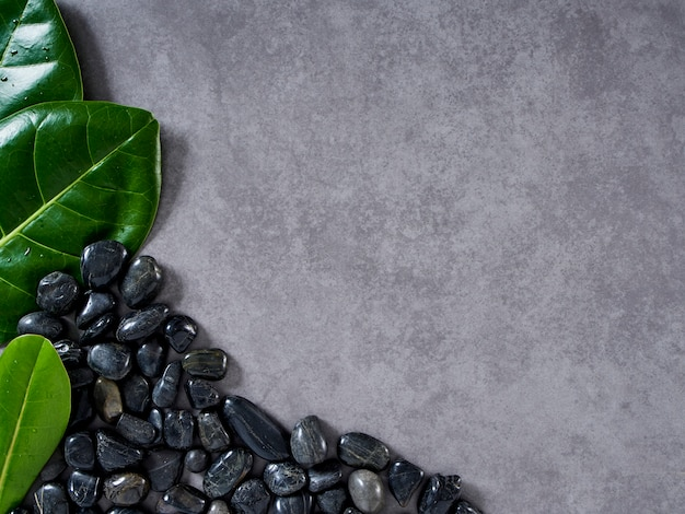 Pebbles black and leaves on gray marble background.