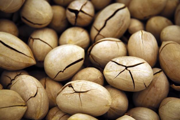 Орехи пекан в треснувшей скорлупе