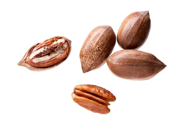 Pecan nuts isolated on white. carya illinoinensis