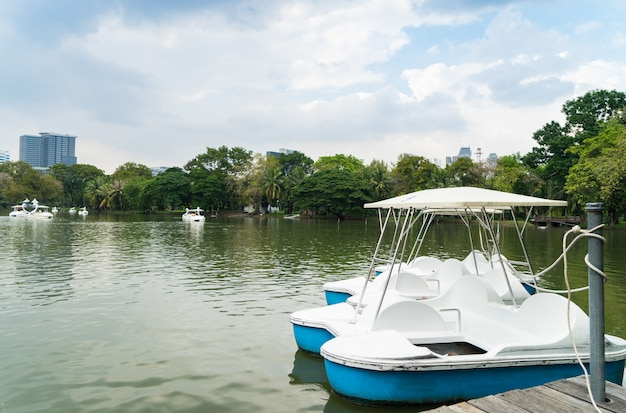 Pedal boat parking on a pier in a city park lake.
